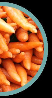 Carrot Dro Fro Yo