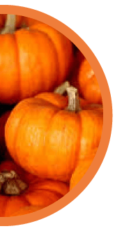 Pumpkin Dro Fro Yo
