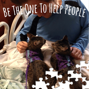 donate to save animal assisted programs