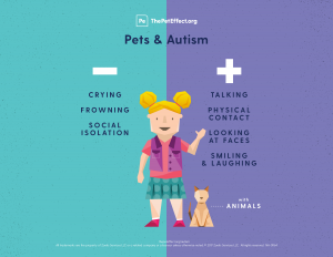 The Difference between Animal Assisted Therapy (AAT) and Activities (AAA