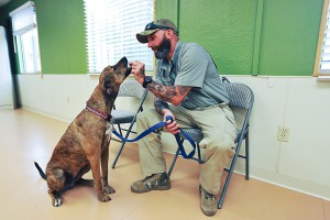 Co-founder of Paws and Stripes trains a shelter dog to help soldiers with PTSD.