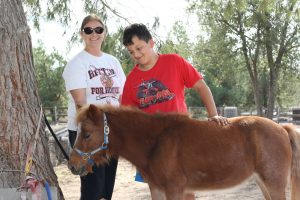 Chips, A Life Changing Mini Horse